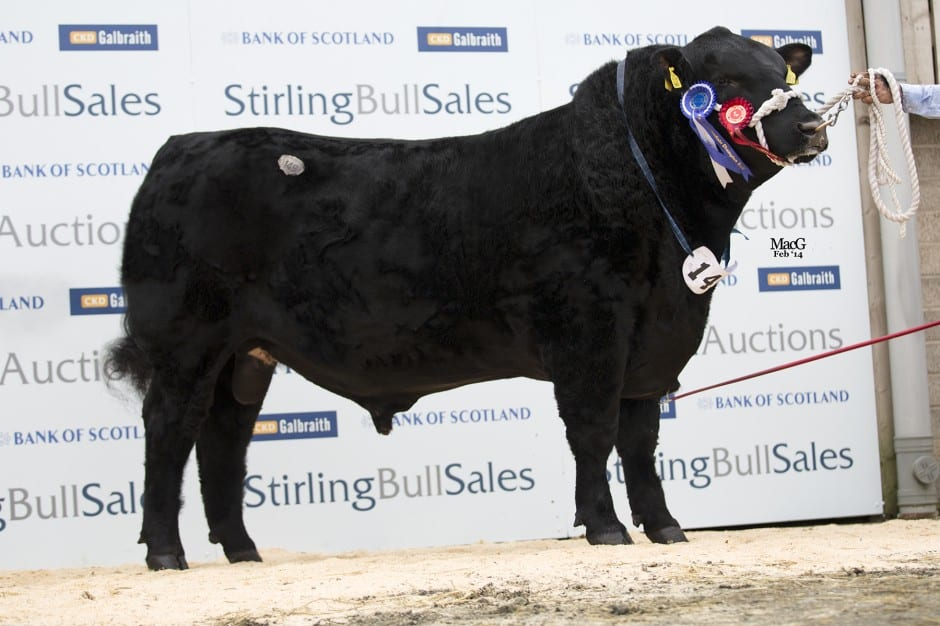 Lot 149 Hallington Edition sold for 17,000gns to A Hodge, Rulesmains
