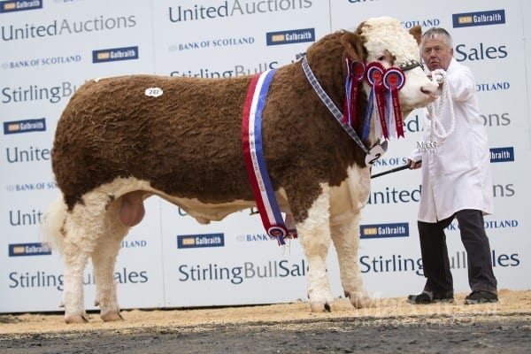 Lot 242 Atlow Dixon, sold for 15,000gns to WS Stronach, Islavale, Keith