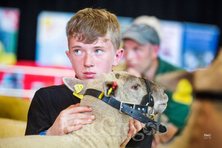 N.S.B.A. Championships - Kilkenny