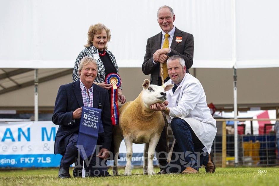 Royal Highland Show '19 - Sheep Champions
